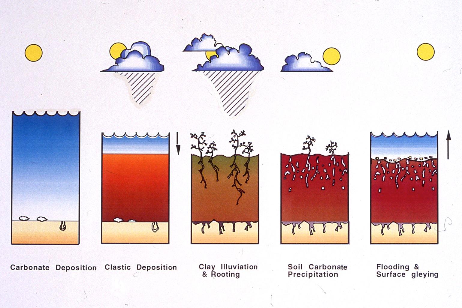 ... Soil Profile Diagram additionally Soil Horizon Layers Diagram. on soil